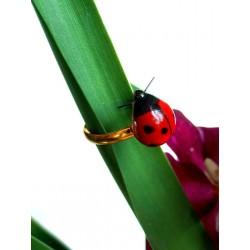 Small ladybug ring