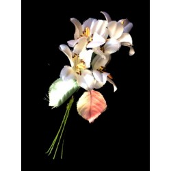 BROOCH IN FABRIC ORCHID IN FABRIC SPECIAL WEDDING