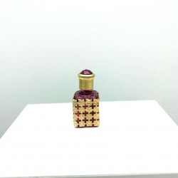MINIATURE PERFUME COLLECTION OR FOR THE SMALL GOLDEN GRID BAG